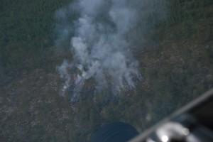 Kohteellle tullessamme paloalue oli jotain 6 aaria (20x30m)